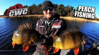 Big Perch Fishing in Sweden with Adam Orre - Catch With Care TV