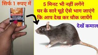 बिना मारे ही चूहे आपके घर से ऐसे भागेंगे की दोबारा घर में घुसने की हिम्मत तक नहीं करेंगे