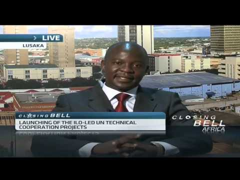 UN creates green jobs for Zambia