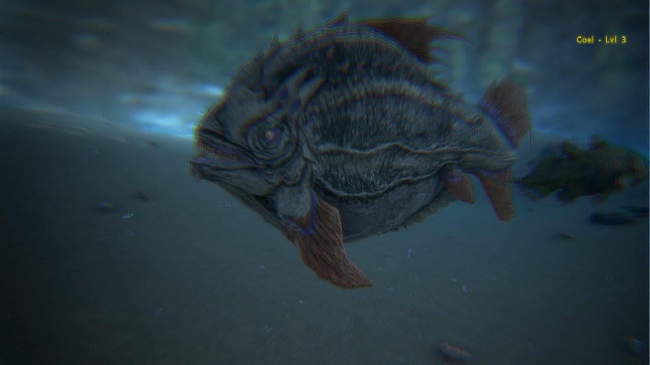 Ark Survival Evolved Piranhas Youtube