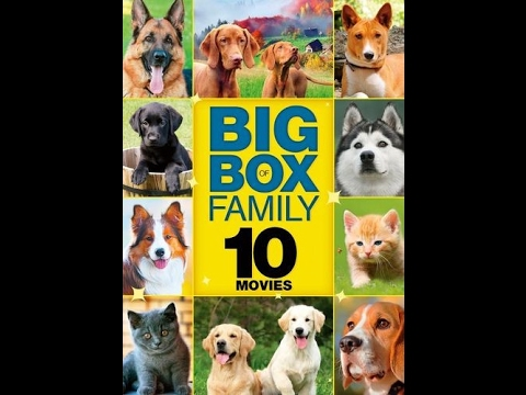 To Big Box Of Family 2016 DVD Disc 1; Old 587 Option