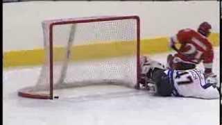 Gól roku ve Sledge hokeji