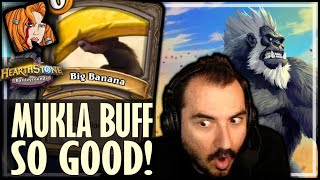 WAIT… MUKLA IS ACTUALLY GOOD?! - Hearthstone Battlegrounds