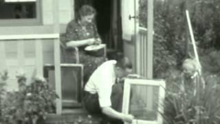 1952: De Amsterdammer en zijn volkstuintje in Amsterdam - met Nieuwe Jonkerstraat, Vondelpark