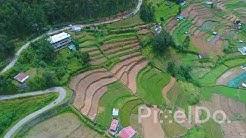 Karala Terrace  Farming