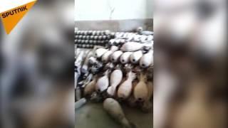 بالفيديو...القوات العراقية تعثر على مصنع خطر لـ