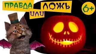 Самые страшные звуки животных Тесты для детей 6+ Правда или ложь на Хеллоуин | Познаватель кот Семен