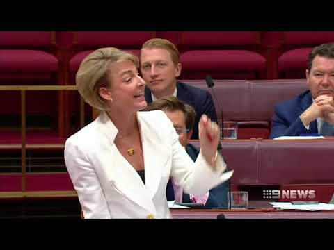 Michaelia Cash names big retail companies that she claims are exploiting workers