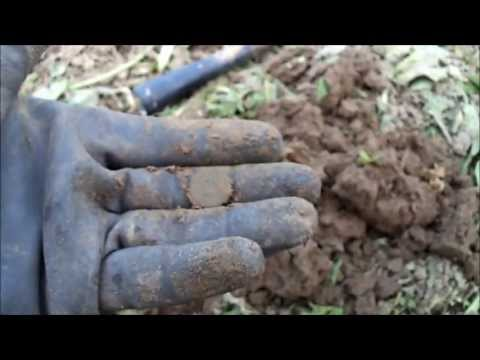 Metaldetecting: Dutch 1800's Coins and Rotten Zinc (nr98)