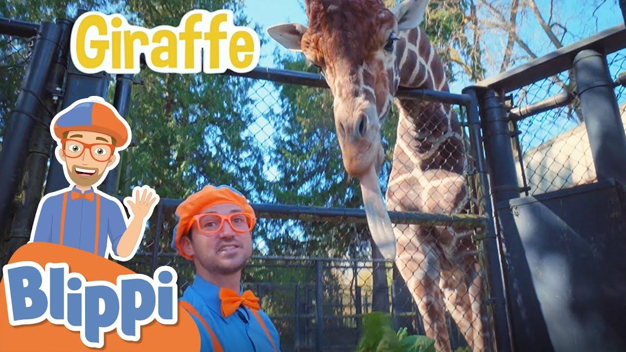 Learning Zoo Animals For Kids With Blippi & More Blippi Episodes | Educational Videos For Children