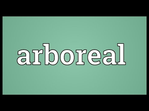 Arboreal Meaning