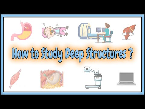 4. How to Study the Internal Structures ?