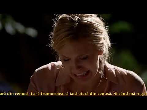 Céline Dion - Ashes/Cenusa  -  Traducere Romana -  (Lost) Tribute.