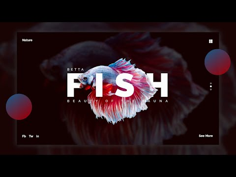 Gimp Tutorial : Simple UI Design - Betta Fish thumbnail