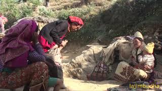 happy people in Nepal 🇳🇵🇳🇵🇳🇵🇳🇵🇳🇵🇳🇵🇳🇵 || village life ||