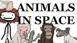 Animals in Space: A Brief History