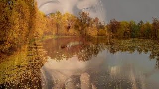 Pulsar - Golden Autumn (remix)
