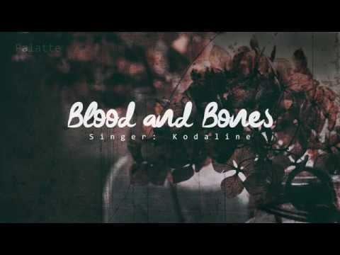 [VIETSUB] Kodaline - Blood And Bones