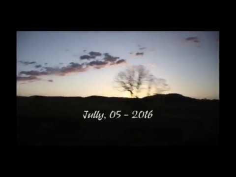 Penguin Sky - Adam Young (ft. AxlThing)