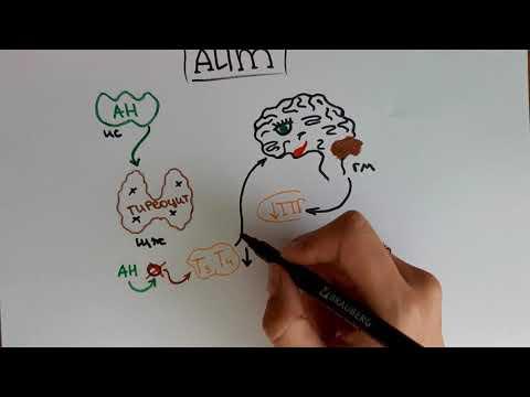 ГИПЕРТИРЕОЗ / ТИРЕОТОКСИКОЗ