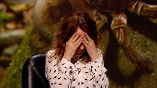 Bird-eating spiders - QI: Series M Episode 10 Preview - BBC Two