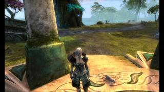 RIFT - Companion Pets: Gritty Kitty