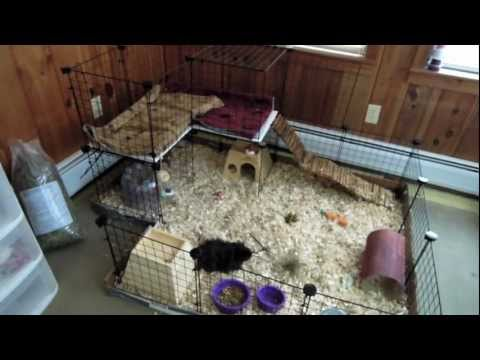 How to make a homemade hamster bin cage doovi for Hamster bin cage tutorial