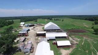 Richlands Dairy Farm - Dinwiddie County, VA