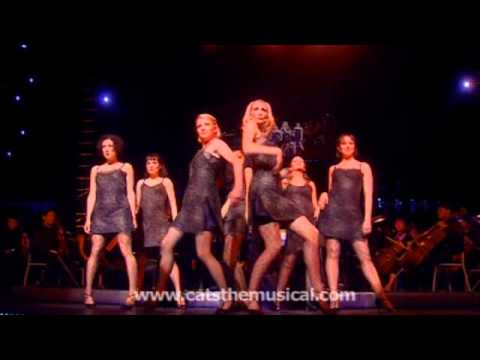 Cats the Musical - Macavity, Live Performance