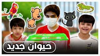 منو صاحب الحيوان يا حظه - فريق عدنان
