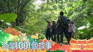 昔日獵人投入保育 退休老師買森林護石虎 part3 台灣1001個故事