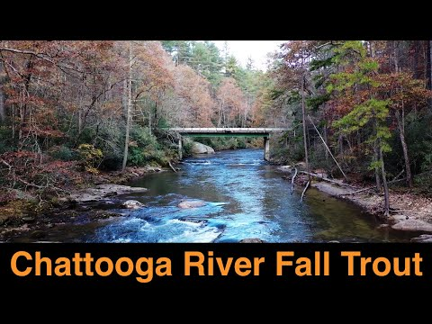 Chattooga River Fall Trout Fishing