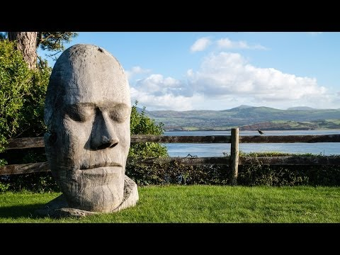 Dominic Clare - Wood Sculptor in Snowdonia. North Wales