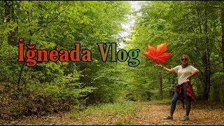 Hadi Dışarı Çıkalım 🚶♀️ l İğneada 🌳  #vlog #longozormanları  #iğneada
