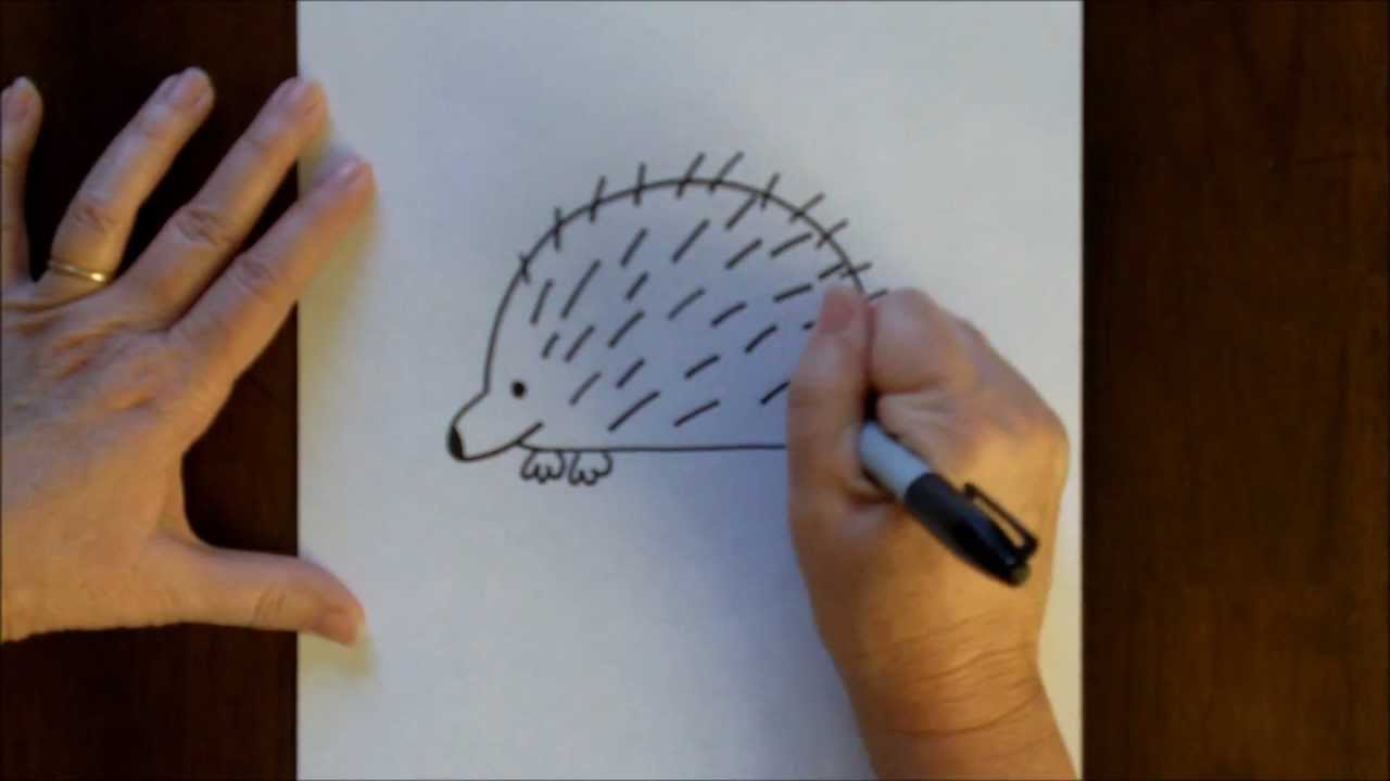 how to draw a cartoon porcupine simple drawing lesson for kids youtube
