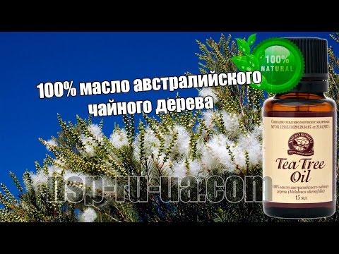Масло чайного дерева его свойства и применение, польза и вред