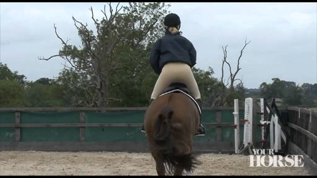 Part Three | Improve your jumping position | Your Horse