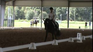 Carol Hibbard and Intaglio Arizona Storm riding Third Level dressage on Sept 28, 2014