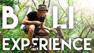 【Bali】現地でネコのう○ちで作るコーヒーを飲んでみた/ Kopi Luwak