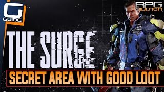 Best Build For Rogue Process The Surge