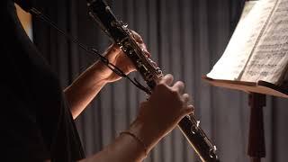 Spohr: Clarinet Concerto No. 1 in C Minor, Op. 26 1st mov.