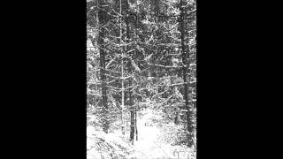 Sadorass - The Transcendental Tower
