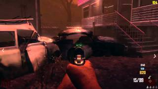 Black Ops 2 Zombies, FX 8320, MSI R9 270 (Maxed Settings) 1080p