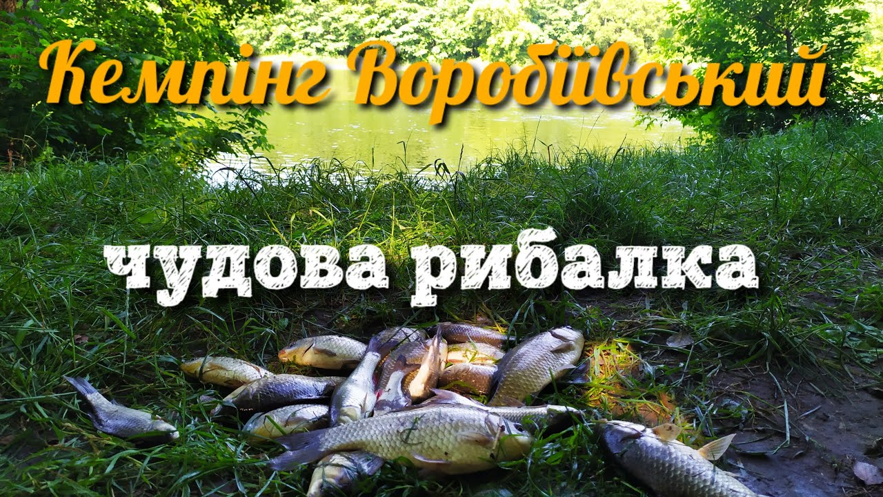 Рибалка на річці Південний буг (Кемпінг Воропіївський)