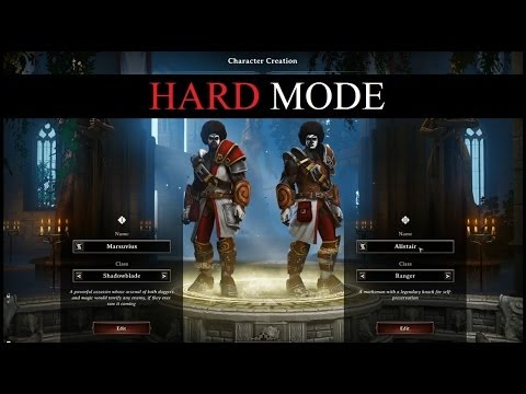 Divinity  Developer S Cut Character Builds