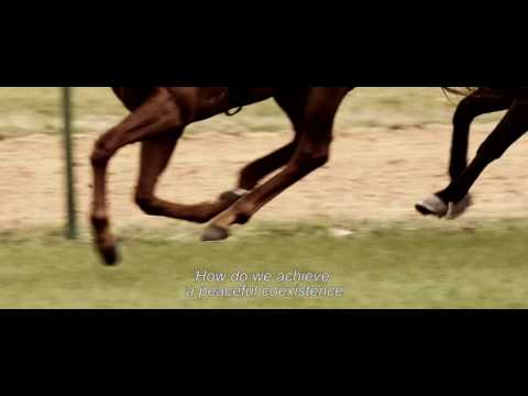 Stefan Zweig, Farewell to Europe / Stefan Zweig, adieu l'Europe (2016) - Trailer (English Subs)