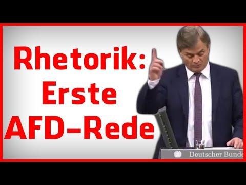 Rhetorik-Analyse: Die erste Rede der AFD im Bundestag 2017 - Bernd Baumann