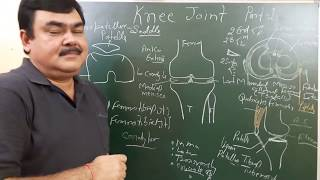 Knee joint part 1/9 by Dr A K Singh