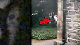 top 5 statues caught moving