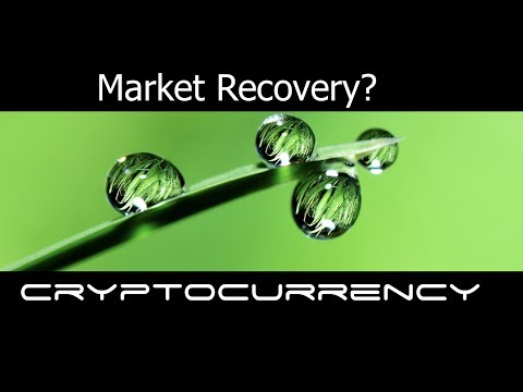 Cryptocurrency Market on The Rise?